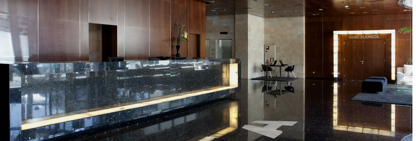Hotel Maydrit Recepción